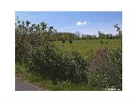 Home for sale: 6501 Break Of Day Rd., Victor, NY 14564