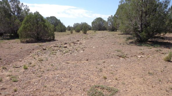 261 Juniperwood Ranch Lot 261, Ash Fork, AZ 86320 Photo 5