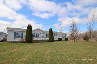 Home for sale: 616 Mckinch, Saranac, MI 48881