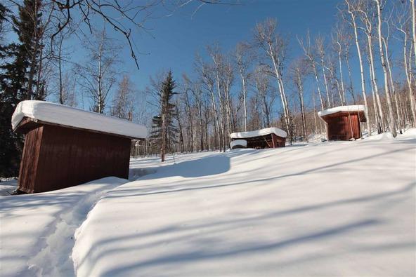 3825 Frenchman Rd., Fairbanks, AK 99709 Photo 10