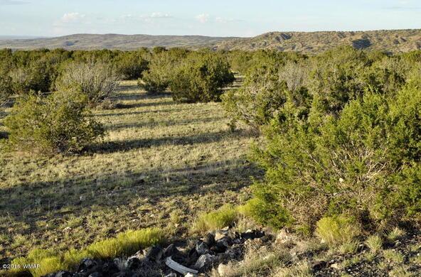 199.54 Acres, Concho, AZ 85924 Photo 16
