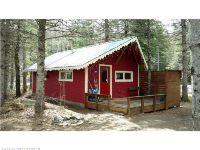 Home for sale: 3001 Woodcock Ln., Kingfield, ME 04947