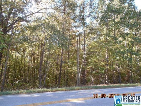 17226 Hwy. 78, Fruithurst, AL 36262 Photo 34