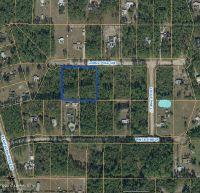 Home for sale: 113, 115 Lodge Pole Cir., Georgetown, FL 32139