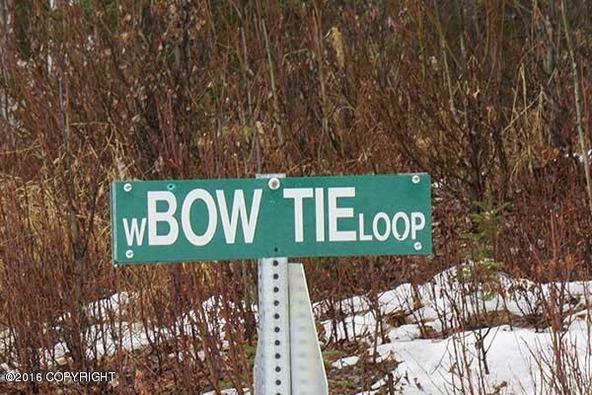 21347 W. Tuxedo Ave., Willow, AK 99688 Photo 23