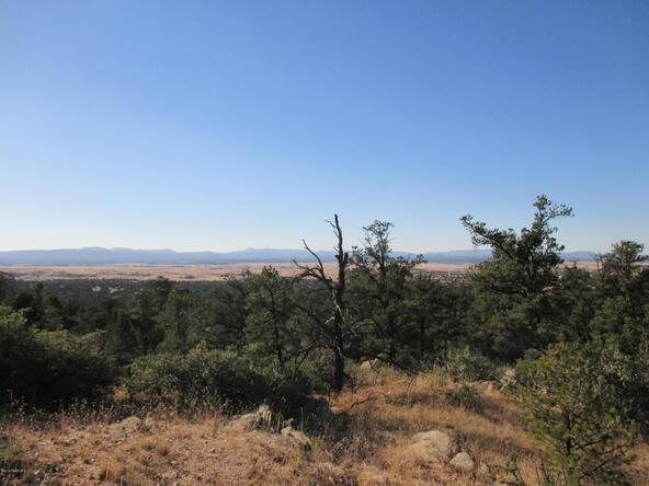 16301 N. Petroglyph, Prescott, AZ 86305 Photo 4