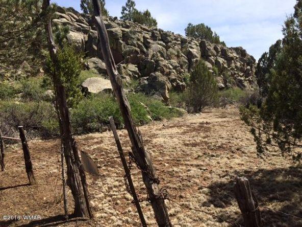 3398 County 4 Rd., Vernon, AZ 85940 Photo 8
