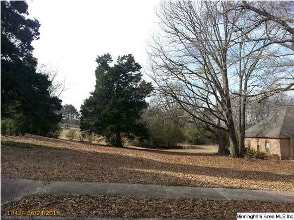 60 Old Roadway, Cropwell, AL 35054 Photo 8