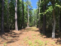 Home for sale: 0 Donnelly Ln., Johns Island, SC 29455