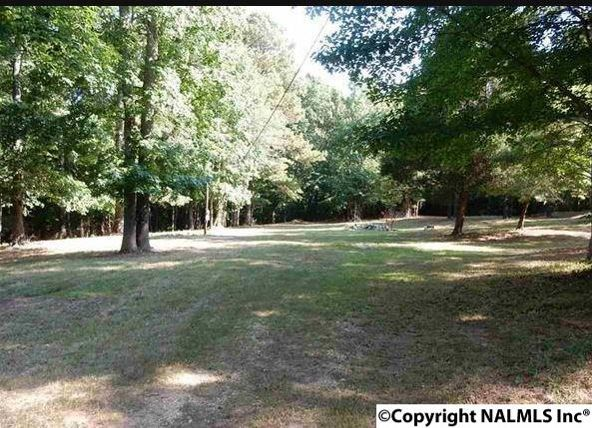 4245 County Rd. 89, Gaylesville, AL 35973 Photo 5