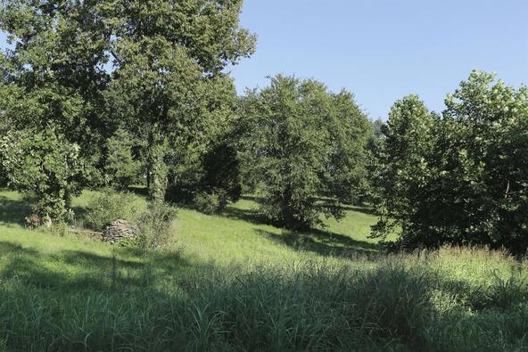 6855 Grimes Mill Rd., Lexington, KY 40515 Photo 3