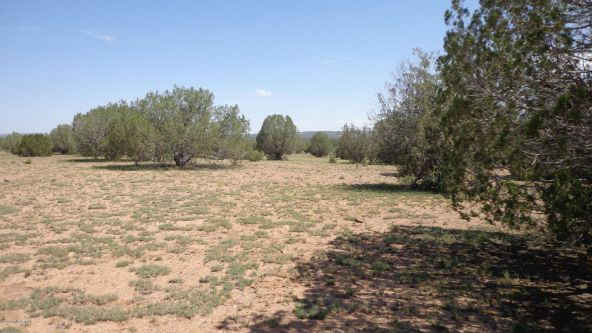 261 Juniperwood Ranch Lot 261, Ash Fork, AZ 86320 Photo 10