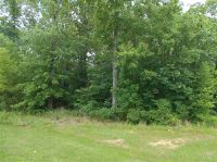 Home for sale: 0 Wood Duck Cv, Raymond, MS 39154