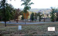 Home for sale: Lt21 Jack Groves Ln., Hayesville, NC 28904