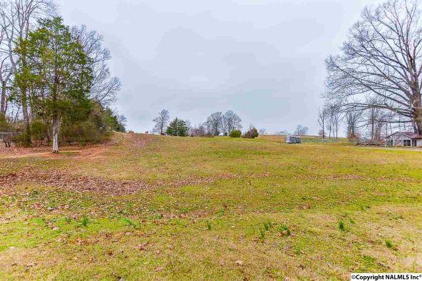 721 County Rd. 22, Mount Hope, AL 35651 Photo 18
