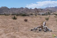 Home for sale: 0 Red Ryder Rd., Pioneertown, CA 92268