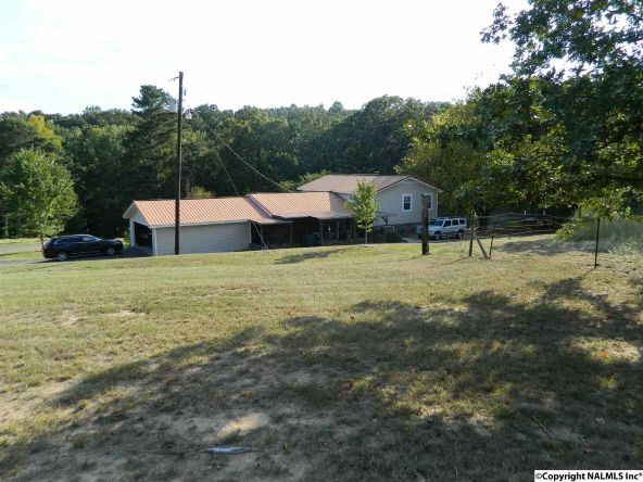 2200b Hwy. 68, Collinsville, AL 35961 Photo 24