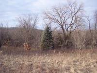 Home for sale: 20674 Big Timber Ridge, Eastman, WI 54626