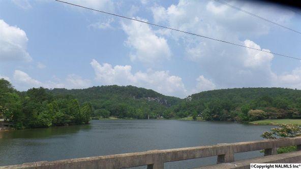 720 County Rd. 365, Leesburg, AL 35983 Photo 3