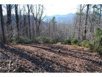 Home for sale: 999 Nicey Gap Dr., Old Fort, NC 28762