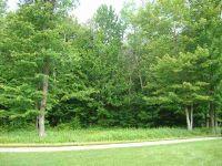 Home for sale: 4135 Arthur Hills, Harbor Springs, MI 49740