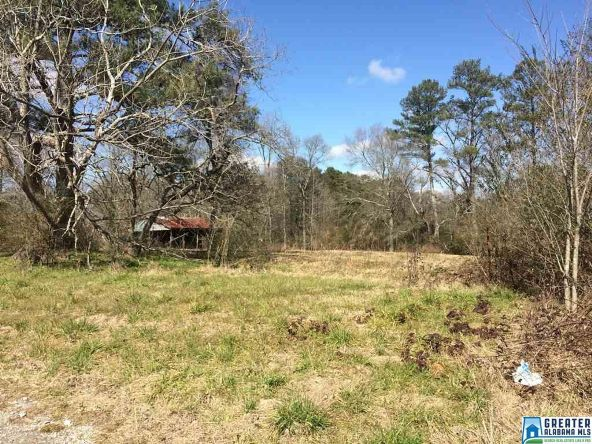 13253 Hwy. 411, Odenville, AL 35120 Photo 11