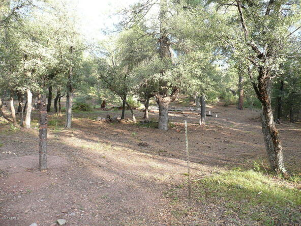 8b N. Chamberlain Trail, Young, AZ 85554 Photo 7