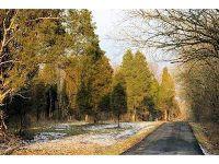 Home for sale: 18 Pine Run Ln., Batavia, OH 45103