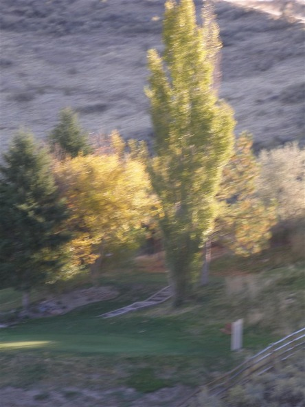 15387 N. Spring Creek Ln., Boise, ID 83714 Photo 15