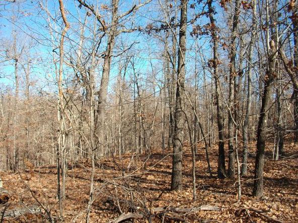 1059 Pleasant Run Rd., Mammoth Spring, AR 72554 Photo 17