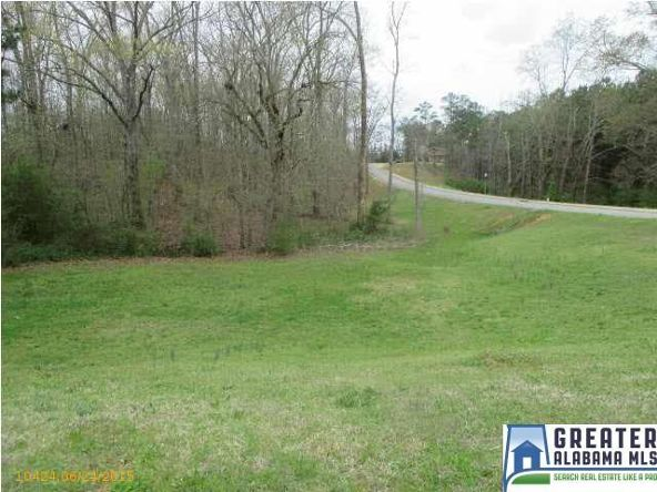 120 Sherwood Pl., Pell City, AL 35128 Photo 8