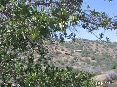 6612 W. Juniper Ridge, Elfrida, AZ 85610 Photo 26