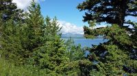 Home for sale: Nhn Duck Lake Rd. Lot 2, Babb, MT 59411