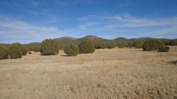 44201 N. Crazy Coyote Way, Seligman, AZ 86337 Photo 40
