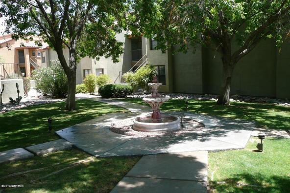 6651 N. Campbell, Tucson, AZ 85718 Photo 8