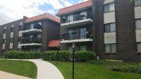 Home for sale: 1255 West Prospect Avenue, Mount Prospect, IL 60056