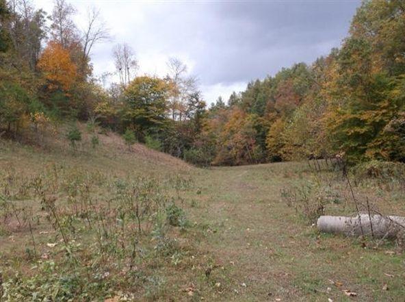 48 Left Fork Shockey Fork Rd., Campton, KY 41301 Photo 22