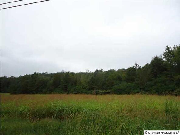 Warrenton Rd., Guntersville, AL 35976 Photo 7