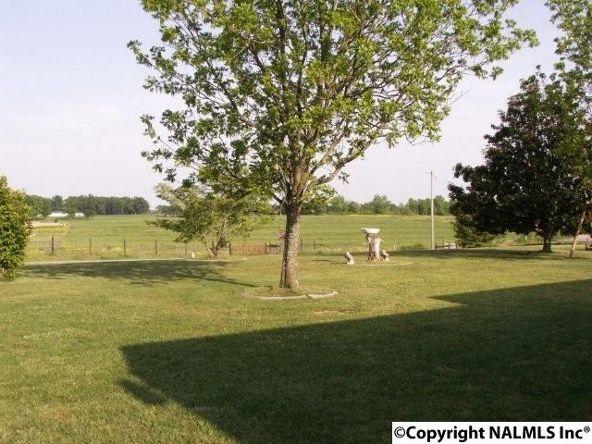 3372 County Rd. 52, Rogersville, AL 35652 Photo 25