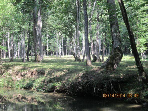 1865 County Rd. 99, Gaylesville, AL 35973 Photo 23