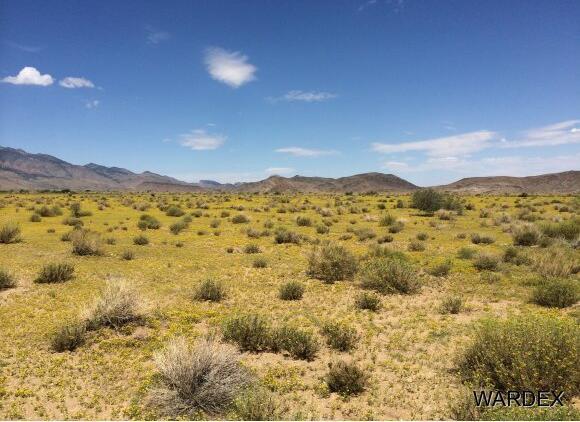 33233004 Land, Kingman, AZ 86409 Photo 6
