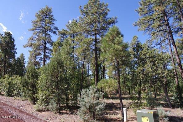 2850 W. Richardson Ln., Lakeside, AZ 85929 Photo 6