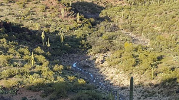 36695 B S. Cow Creek Rd., Morristown, AZ 85342 Photo 15