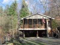 Home for sale: 63 Left Fork Ln., Burnsville, NC 28714