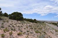 Home for sale: 46 Anasazi Trails Loop, Placitas, NM 87043