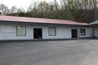 Home for sale: 316 Steam Shovel Rd., Stanton, KY 40391