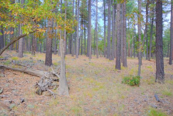 8100 W. Dk Ranch Rd., Flagstaff, AZ 86005 Photo 22