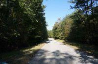 Home for sale: 6 Goldmine Ln., Schuyler, VA 22969