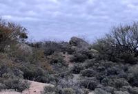 Home for sale: 38079 N. Boulder View Dr., Scottsdale, AZ 85262