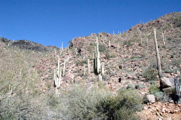 43224 N. 79th St., Cave Creek, AZ 85331 Photo 40